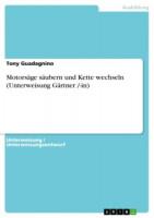 Motorsäge säubern und Kette wechseln von Tony Guadagnino, Taschenbuch - SM978308T
